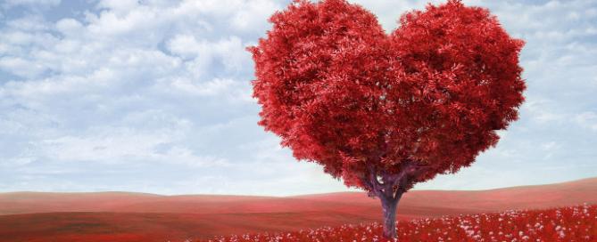 Armastus igas päevas