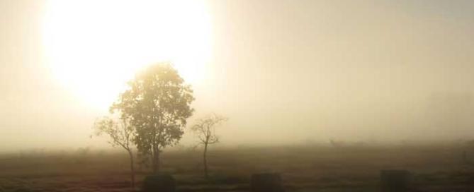 Udune karjamaa hommikul. Päikesetõus.