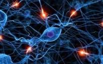 bioresonantsteraapia pilt kodulehel