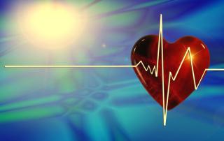 Süda teab, südametarkus