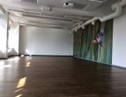 Holistika Instituudi treeningsaal