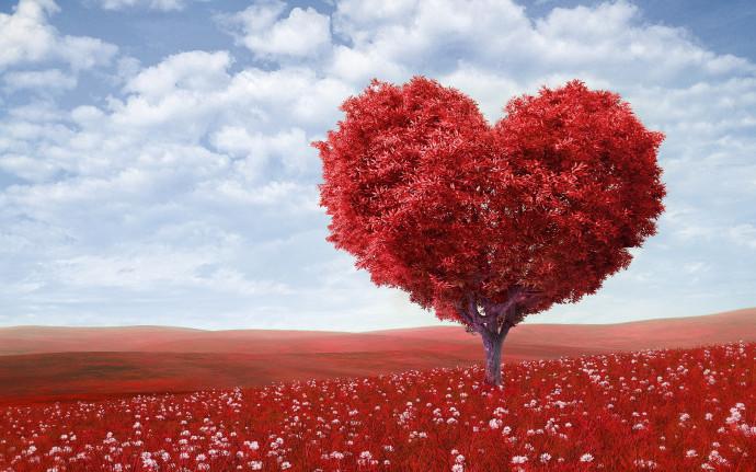 Armastus igaks päevaks