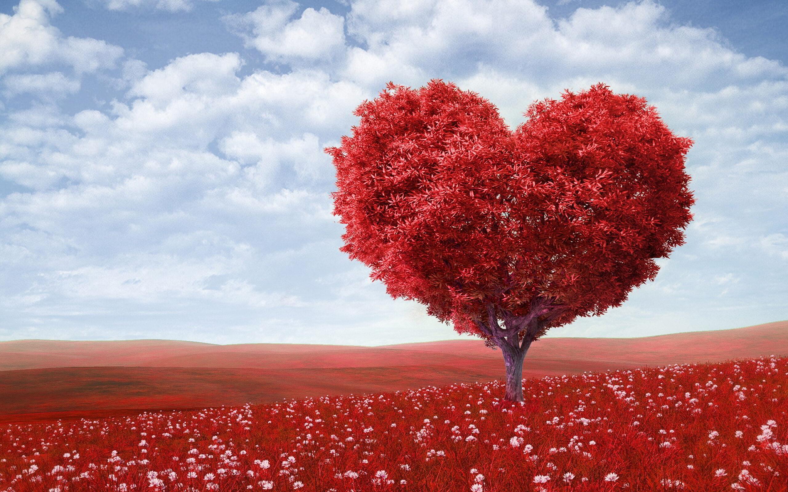 Tark mees põues – süda mõistab enam kui aju iial teada võib