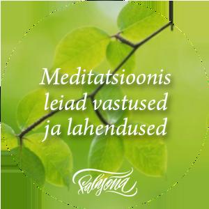 Salasõna meditatsioonid