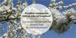Volbripäev: kevadine maagiapäev Holistika Instituudis