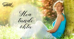 Salasõna Hea tunde õhtu - www.salasona.eu